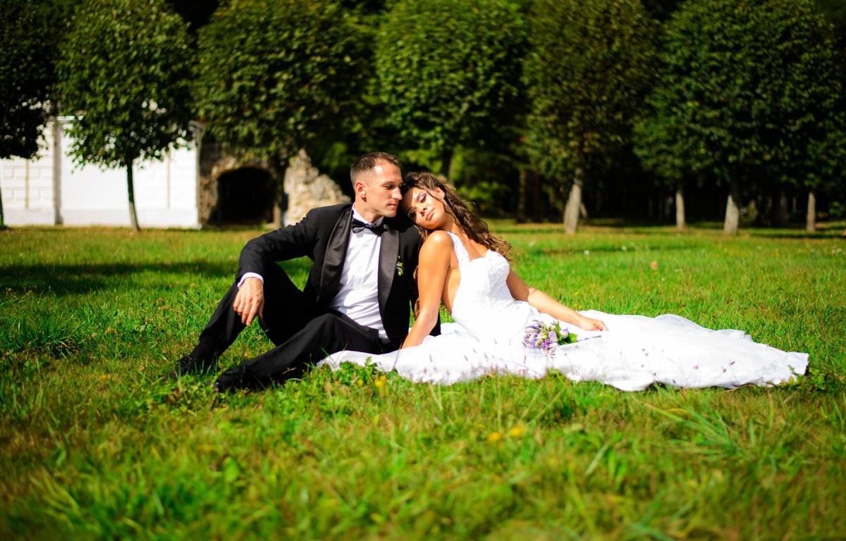 жених и невеста на поляне